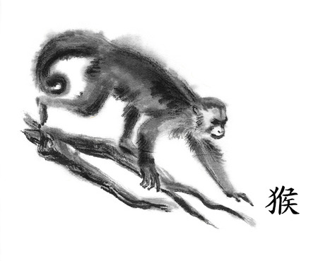 Monkey oriental ink painting with Chinese hieroglyph monkey. Gracile capuchin walking on tree branches. Isolated on white background Symbol of the new year of monkey.