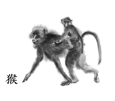 baboon: Monkey oriental ink painting with Chinese hieroglyph monkey. Baboon mother with a baby riding on her back. Isolated on white background. Symbol of the new year of monkey.