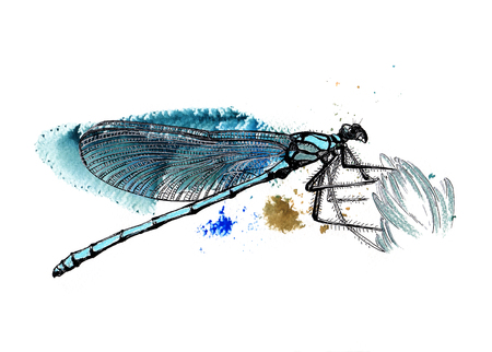 scrapbook element: Blue dragonfly, handmade  black and silver drawing on a watercolor splash background. Graphic texture. Template for scrapbook. Element for your design.
