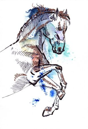 dignity: Leaping horse black and copper drawing on a watercolor splash. Isolated on white background. Template for your design.