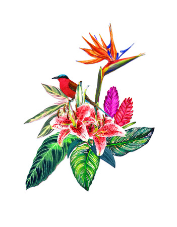 Tropical bouquet of exotic flowers, leaves and a bird. Handmade watercolor isolated on white background. Fashion or stationery, greeting  invitation card Hawaiian style, botanical illustration.