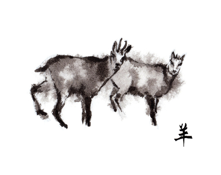 year of sheep: Two chamois goats male and female oriental ink painting with Chinese hieroglyph goat. Symbol of the new year of goat, sheep.
