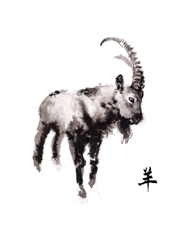 year of sheep: Alpine ibex goat oriental ink painting with Chinese hieroglyph goat. Symbol of the new year of goat, sheep.