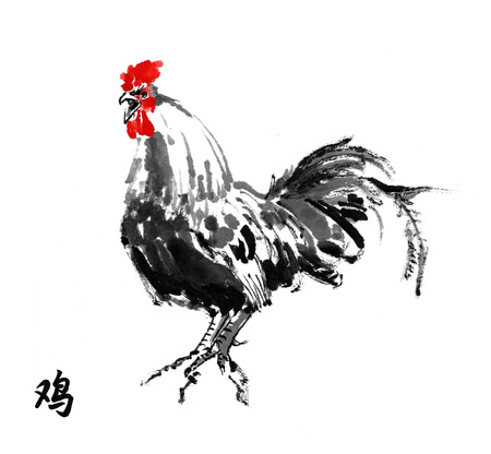 fidelity: Rooster crowing oriental ink painting with hieroglyph rooster. Sumi-e illustration isolated on white background. Symbol of the Chinese new year of rooster. Stock Photo