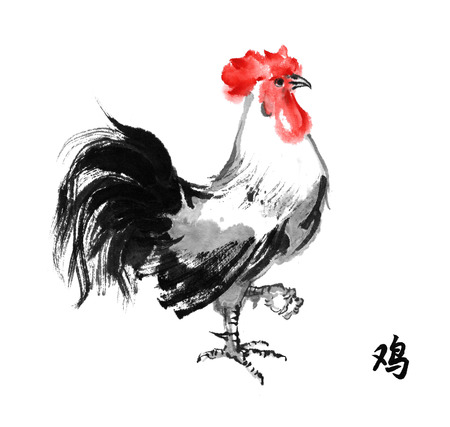 Rooster standing on one leg, oriental ink painting with hieroglyph rooster. Sumi-e illustration isolated on white background. Symbol of the Chinese new year of rooster.