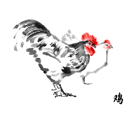 Rooster and hen oriental ink painting with hieroglyph rooster. Sumi-e illustration isolated on white background. Symbol of the Chinese new year of rooster.