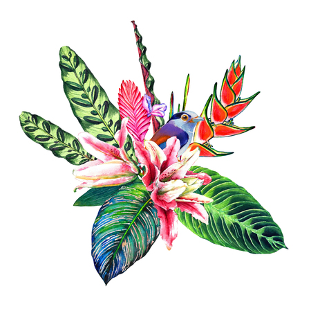 rain forest: Tropical bouquet. Exotic flowers, rain forest leaves and a bird. Handmade watercolor, isolated on white background. Floral composition for your design. Template for a greetinginvitation card.