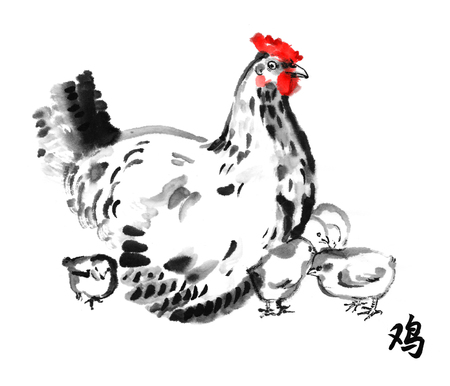 brooder: Mother hen with chicks, oriental ink painting with hieroglyph rooster. Sumi-e illustration isolated on white background. Symbol of the Chinese new year.