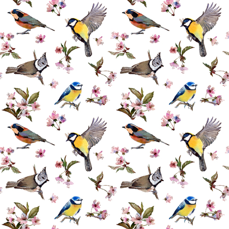 parus: Seamless watercolor pattern cherry blossom branches and birds. Textile print. Isolated on white background. Stock Photo