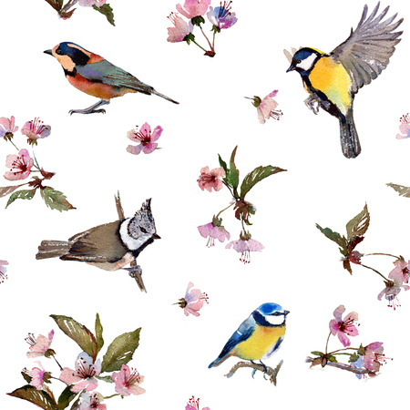 parus: Seamless watercolor pattern cherry blossom and birds. Textile print. Isolated on white background. Stock Photo