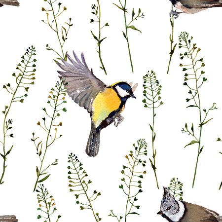 twit: Birds and herbs. Handmade isolated watercolor floral seamless pattern, isolated on white background. Fabric texture. Herbs vintage design.