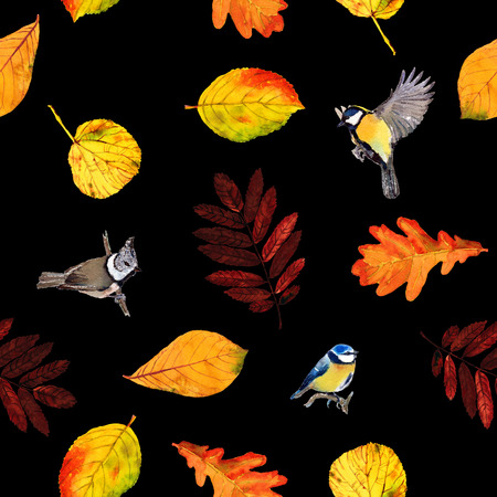 Seamless watercolor pattern birds and autumn leaves. Beautiful red, orange and yellow colors of fall. Textile print. Isolated on black background.