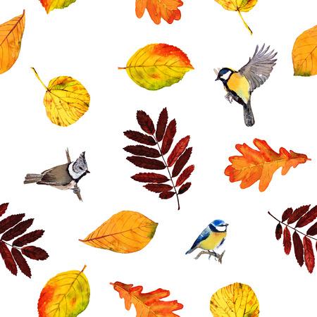 Beste Herbstblätter Zu Färben Zeitgenössisch - Beispiel ...