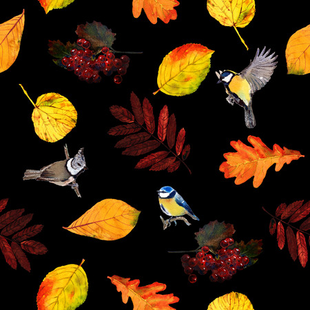 Seamless watercolor pattern birds with autumn leaves and berries. Beautiful red, orange and yellow colors of fall. Textile print. Isolated on black background. Stock Photo