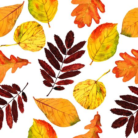 Seamless watercolor pattern autumn leaves. Beautiful red, orange and yellow colors of fall. Textile print. Isolated on black background.