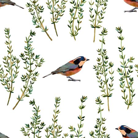 twit: Birds and thyme. Handmade isolated watercolor floral seamless pattern on white background. Fabric texture. Herbs vintage design.