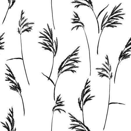 panicle: Grass panicles scattered free. Hand painted texture. Monochrome, on white background.