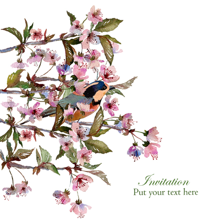 twit: Watercolor cherry blossom branches with a bird. Isolated on white background. Floral background. Greetinginvitation card. Template for scrapbook.