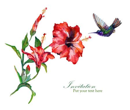 Tropische boeket van rode hibiscus en een kolibrie.