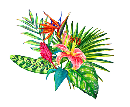 Tropical bouquet. Exotic flowers of lily, strelitzia, bromeliad rainforest palm leaves. Handmade watercolor isolated on white background. Floral composition for your design.