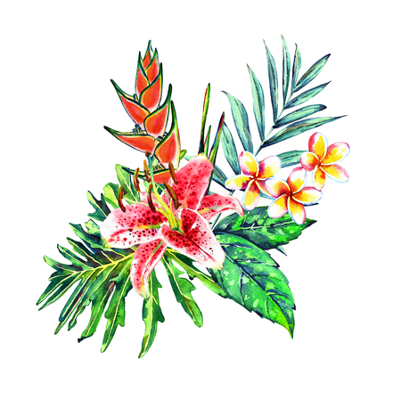 Tropical bouquet. Exotic flowers of lily, plumeria and heliconia with rain forest palm and monstera leaves. Handmade watercolor, isolated on white background. Floral composition for your design. Stock Photo