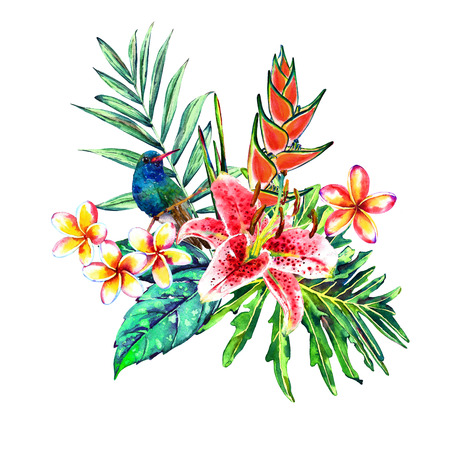 Tropical bouquet. Watercolor exotic plants: flowers of heliconia and plumeria, pink lily, palm branch and hummingbird. Isolated on white background. Template for your design. Stock Photo