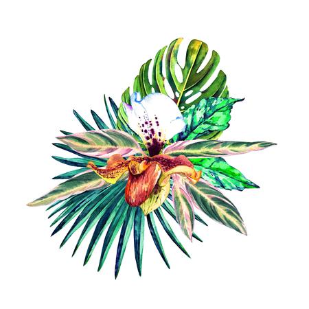 Tropischer Blumenstrauß. Exotische Blume der Orchidee mit Dschungel Blätter, Palmen und Monstera. Handgemachtes Aquarell, getrennt auf weißem Hintergrund. Blumenzusammensetzung für Ihr Design. Standard-Bild - 79876819