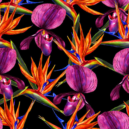 allover: Seamless tropical floral pattern. Hand painted watercolor exotic orchids and flowers of strelitzia on black background. Textile design.