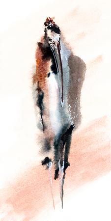 Marabou stork watercolor painting. Original art. Stock Photo