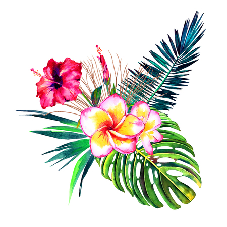 Tropical bouquet. Exotic flowers of hibiscus and plumeria, rain forest palm leaves and monstera. Handmade watercolor, isolated on white background. Floral composition for your design. Stock Photo