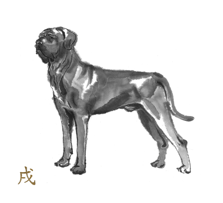 Tosa inu oriental ink painting with golden Chinese hieroglyph dog. Symbol of the new year. Original sumi-e art.