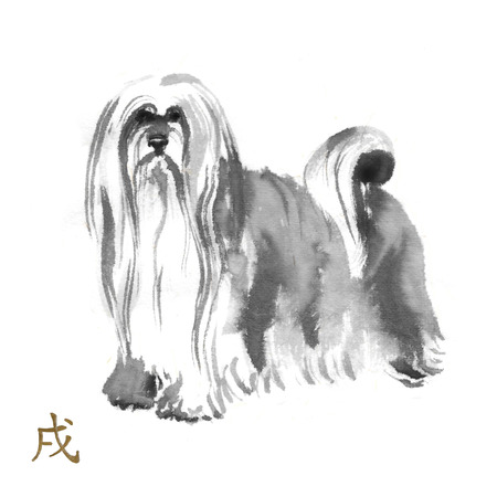 Lhasa apso oriental ink painting with golden Chinese hieroglyph dog. Symbol of the new year. Original sumi-e art. Stock Photo