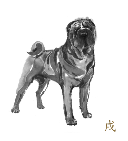 Shar pei oriental ink painting with golden Chinese hieroglyph dog. Symbol of the new year. Original sumi-e art. Stock Photo