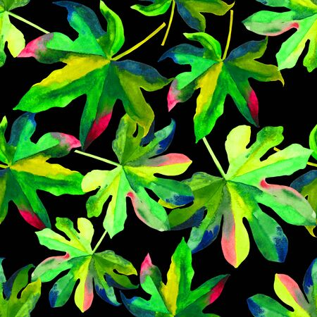 Seamless floral pattern with stylized watercolor. Colorful jungle foliage on black background. Textile design. Stock Photo
