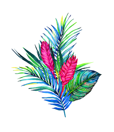 Tropical bouquet. Exotic flowers of bromelia, rain forest palm and calathea leaves. Handmade watercolor illustration, isolated on white background. Floral composition for your design. Stock Photo