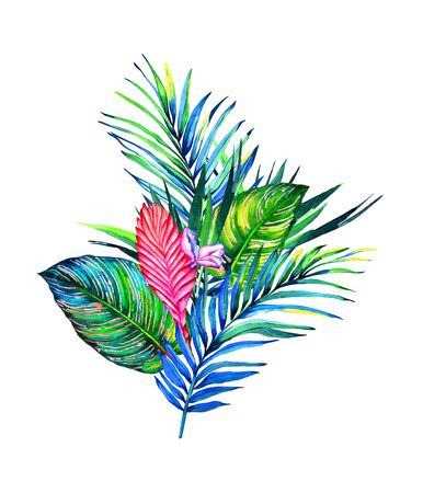 Tropical bouquet. Exotic flowers of bromelia, palm and calathea leaves. Handmade watercolor illustration of a rain forest foliage, isolated on white background. Floral composition for your design.