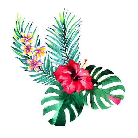 Tropical bouquet. Exotic flowers of hibiscus and plumeria, rain forest palm and monstera leaves. Handmade watercolor, isolated on white background. Floral composition for your design. Banco de Imagens - 87883099
