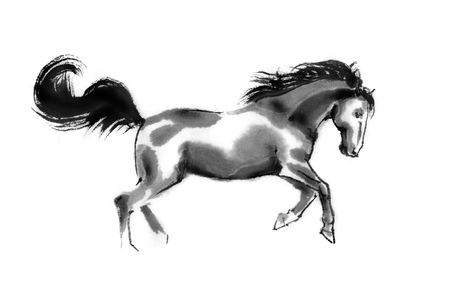 Sumi-e illustration of a running horse, moving to the right. Oriental ink painting, isolated on white background.