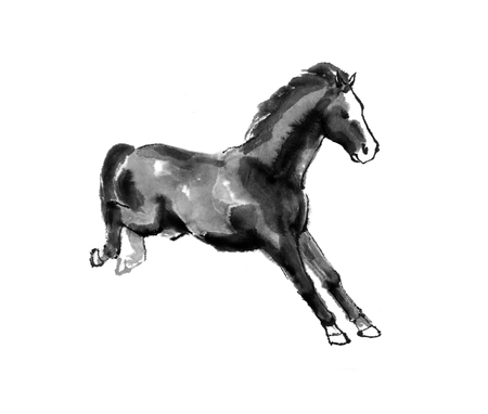Sumi-e illustration of a horse leaping, landing on the front legs. Oriental ink painting, isolated on white background.