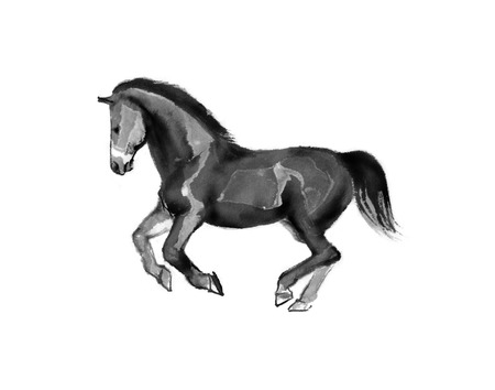 Sumi-e illustration of a horse running, moving to the left. Oriental ink painting, isolated on white background.. Oriental ink painting, isolated on white background. 写真素材