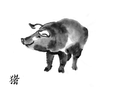 Pig sumi-e illustration. Swine oriental ink wash painting with Chinese hieroglyph pig. Symbol of the eastern new year.
