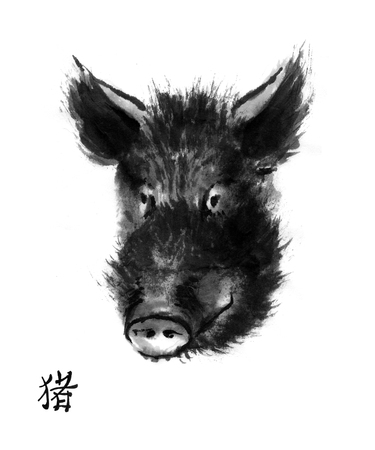 Pig sumi-e illustration. Head of wild boar oriental ink wash painting with Chinese hieroglyph pig. Symbol of the eastern new year. Stockfoto