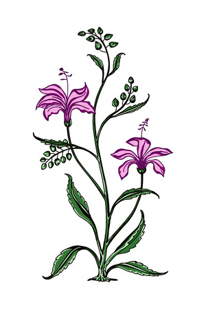 Wood block print vector floral element. Traditional oriental ethnic motif of India Mogul, bunch of pink lilies isolated on white background. For your design.