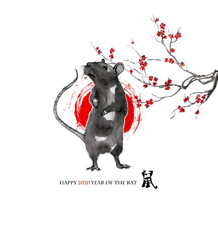 Rat standing on rear paws, a sun disk and a branch of cherry blossom, oriental ink wash painting, sumi-e. Hand painted greeting card Eastern new year. With Chinese hieroglyph