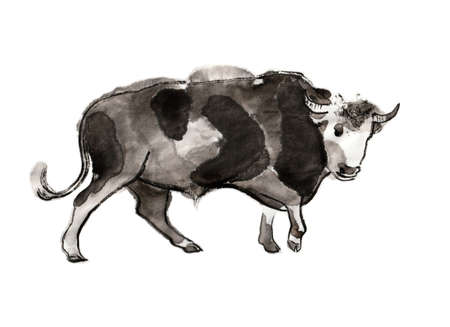 Walking bull, sumi-e illustration. Oriental ink wash painting. Symbol of the eastern new year of the Ox. 免版税图像