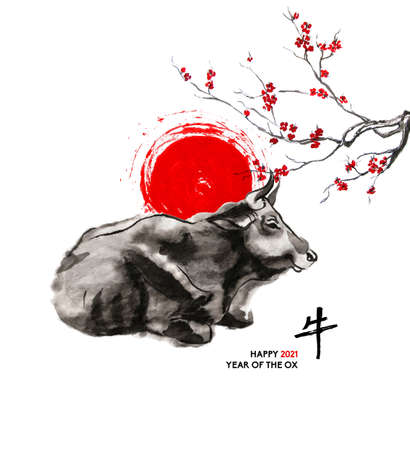 Resting cow, a sun disk and a branch of cherry blossom, oriental ink wash painting, sumi-e. Hand painted greeting card Eastern new year. With Chinese hieroglyph `Ox` and text.