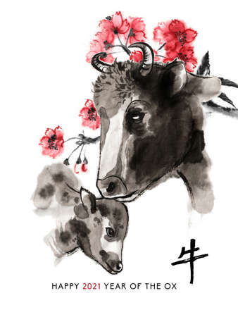 Ox sumi-e greeting card oriental new year. Cow and calf heads and a branch of cherry blossom, Eastern ink wash painting. With Chinese hieroglyph `Ox` and text. 免版税图像