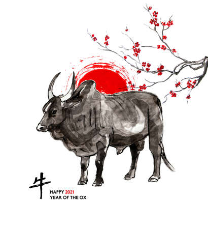 Zebu bull, a sun disk and a branch of cherry blossom, oriental ink wash painting, sumi-e. Hand painted greeting card Eastern new year. With Chinese hieroglyph `Ox` and text.