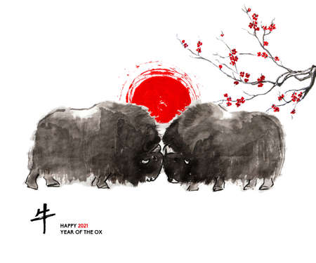 Musk oxen, a sun disk and a branch of cherry blossom, oriental ink wash painting, sumi-e. Hand painted greeting card Eastern new year. With Chinese hieroglyph `Ox` and text. 免版税图像