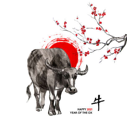 Water buffalo, a sun disk and a branch of cherry blossom, oriental ink wash painting, sumi-e. Hand painted greeting card Eastern new year. With Chinese hieroglyph `Ox` and text.